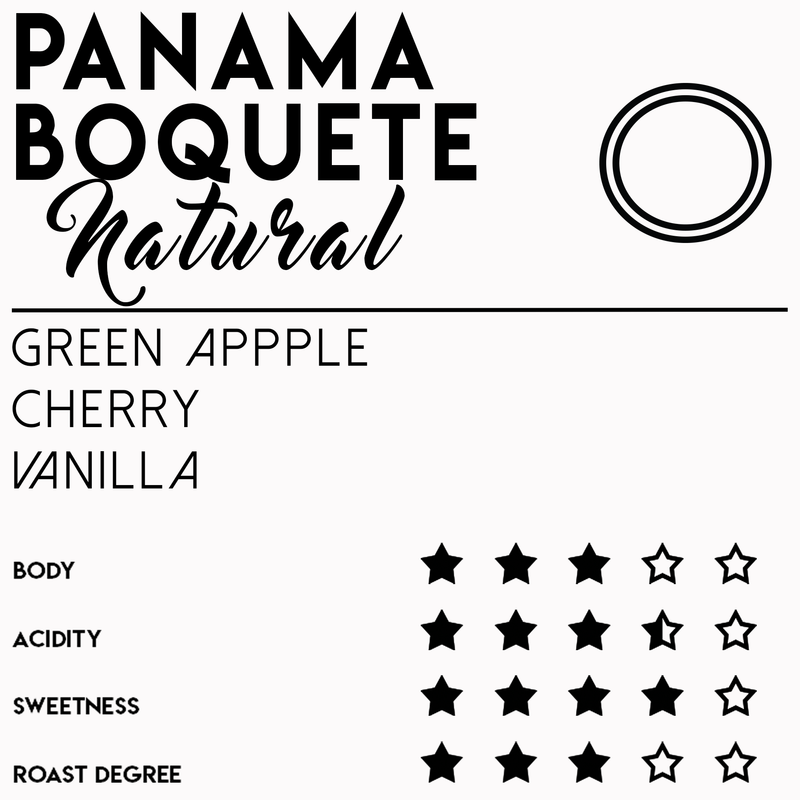Panama Boquete - Natural - Coffee - Meebz Coffee