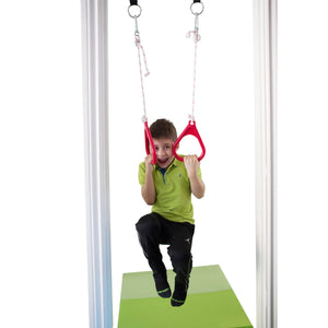Doorway Gym Kit: Combo, Rings, Swing and Rope Ladder - DreamGYM