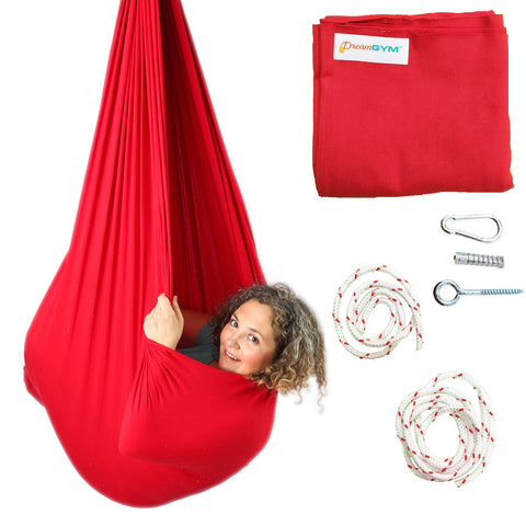 Sensory Swing - DreamGYM