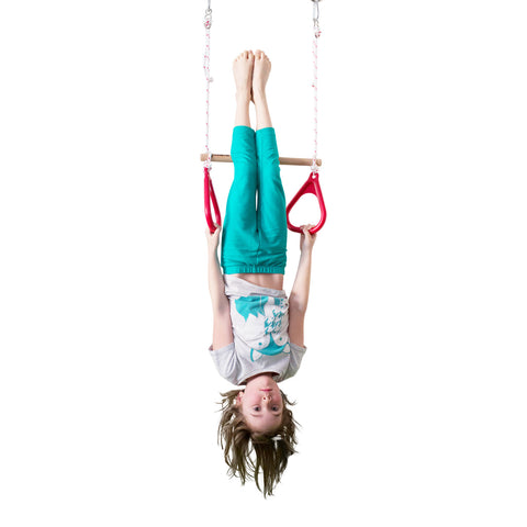 Gym Rings and Trapeze Bar Combo - DreamGYM