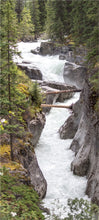 Load image into Gallery viewer, Maligne River, 16 Stairs