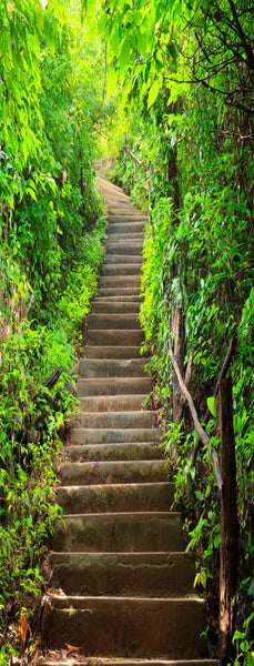 Stairway to Tranquility