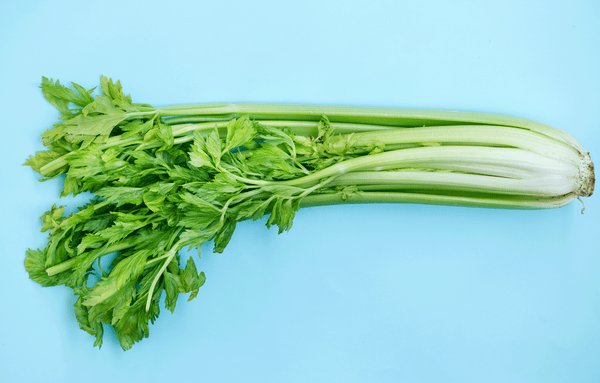 Celery juice – sweet benefits from a bitter glassful