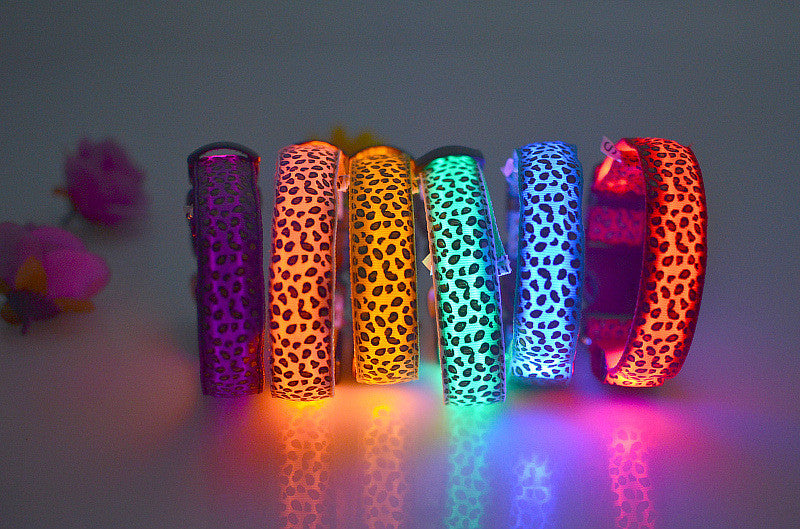 LED Fluorescent Dog Collar - CrazyPassionateAbout.com