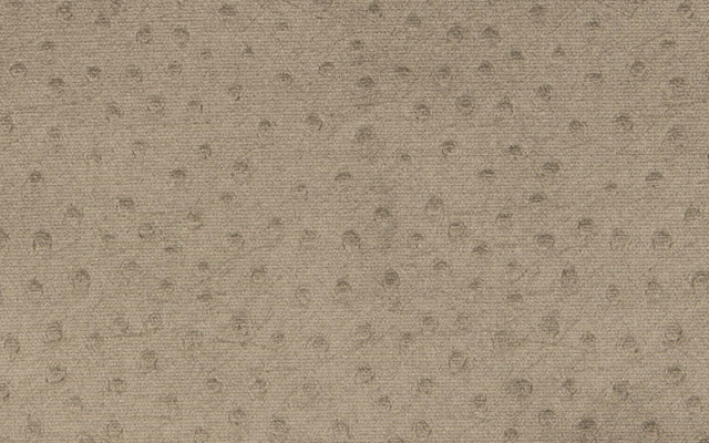 GLANT OUTDOOR OSTRICH :: Taupe