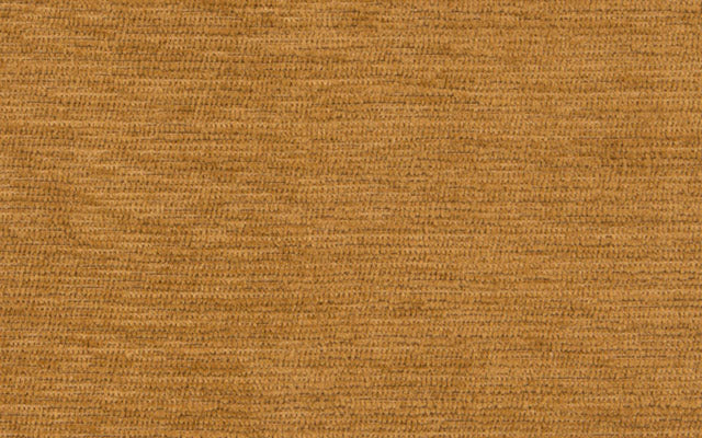 LAKEWOOD :: Vicuna