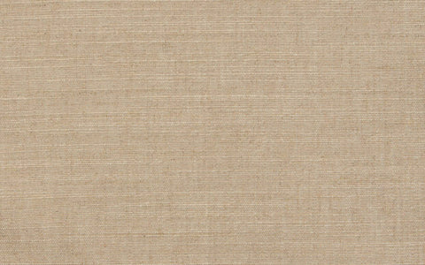 COUTURE LINEN CANVAS N.7 :: Pale Willow