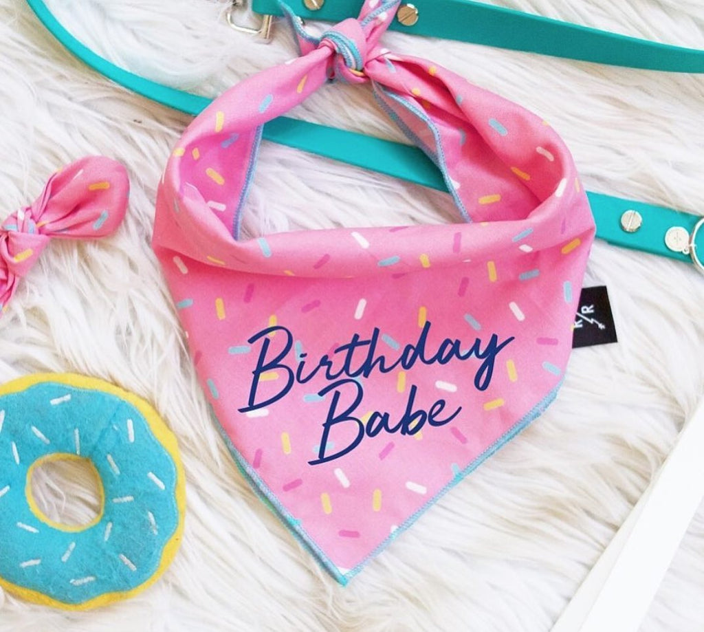 LIMITED EDITION: Pink Sprinkles Birthday Babe Bandana by Ripley + Rue | Ripley & Rue