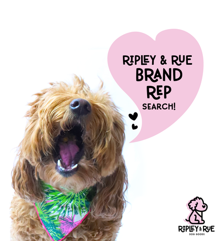 ripley and rue brand rep