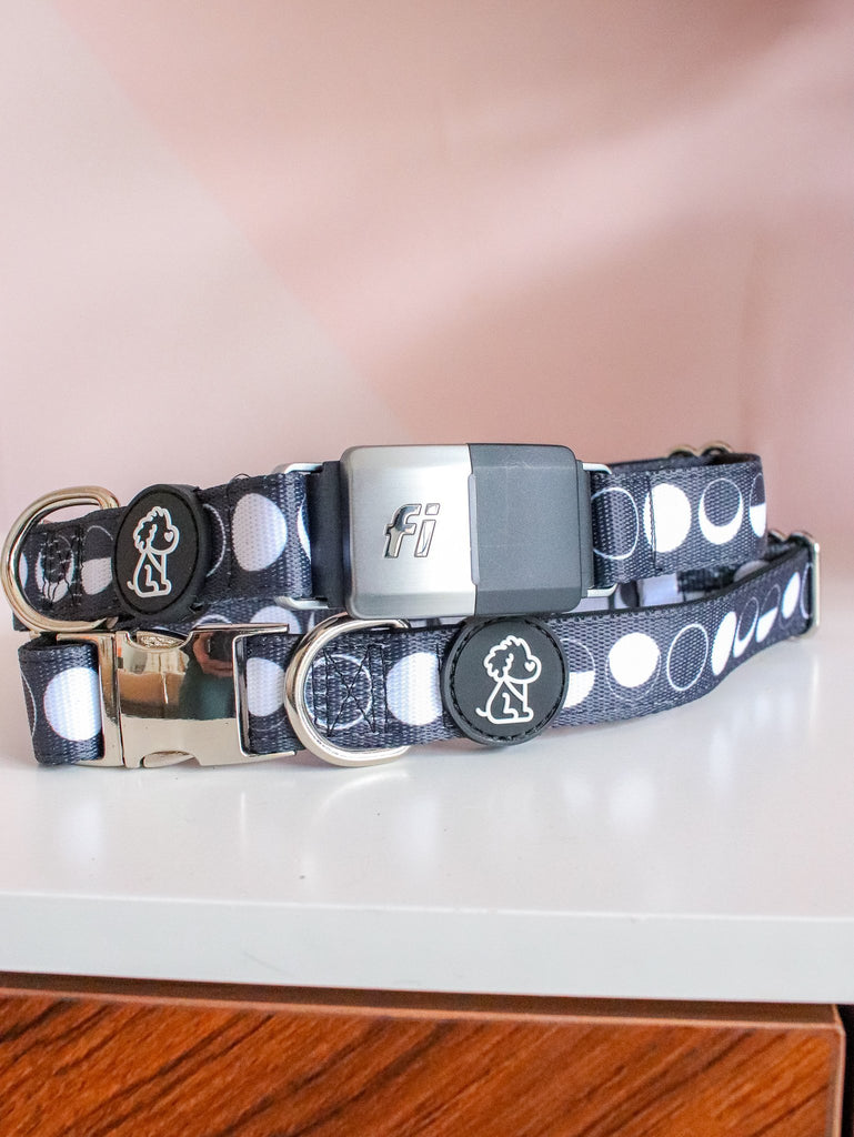 Fi Compatible Moon Child + Silver Comfort Dog Collar - Ripley & Rue