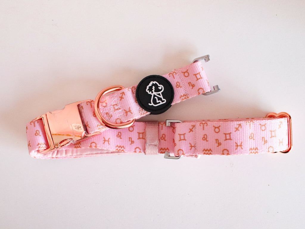 Fi Compatible Pink Zodiac + Rose Gold Comfort Dog Collar - Ripley & Rue