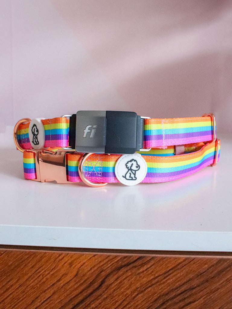 Fi Compatible Rainbow Remix + Rose Gold Comfort Dog Collar - Ripley & Rue