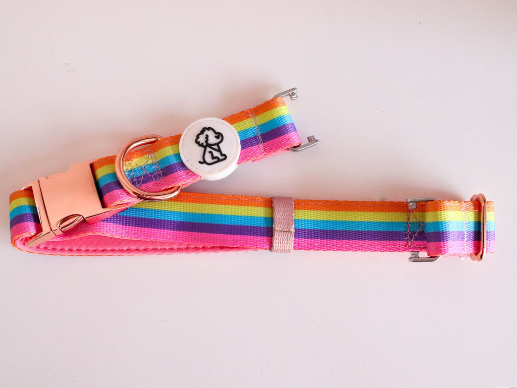 Rainbow Remix Fi Compatible + Rose Gold Comfort Dog Collar - Ripley & Rue