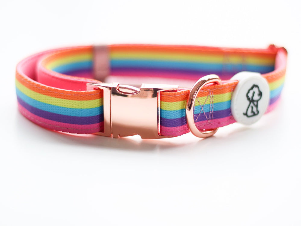 Rue's Rainbow Remix + Rose Gold Comfort Dog Collar - Ripley & Rue