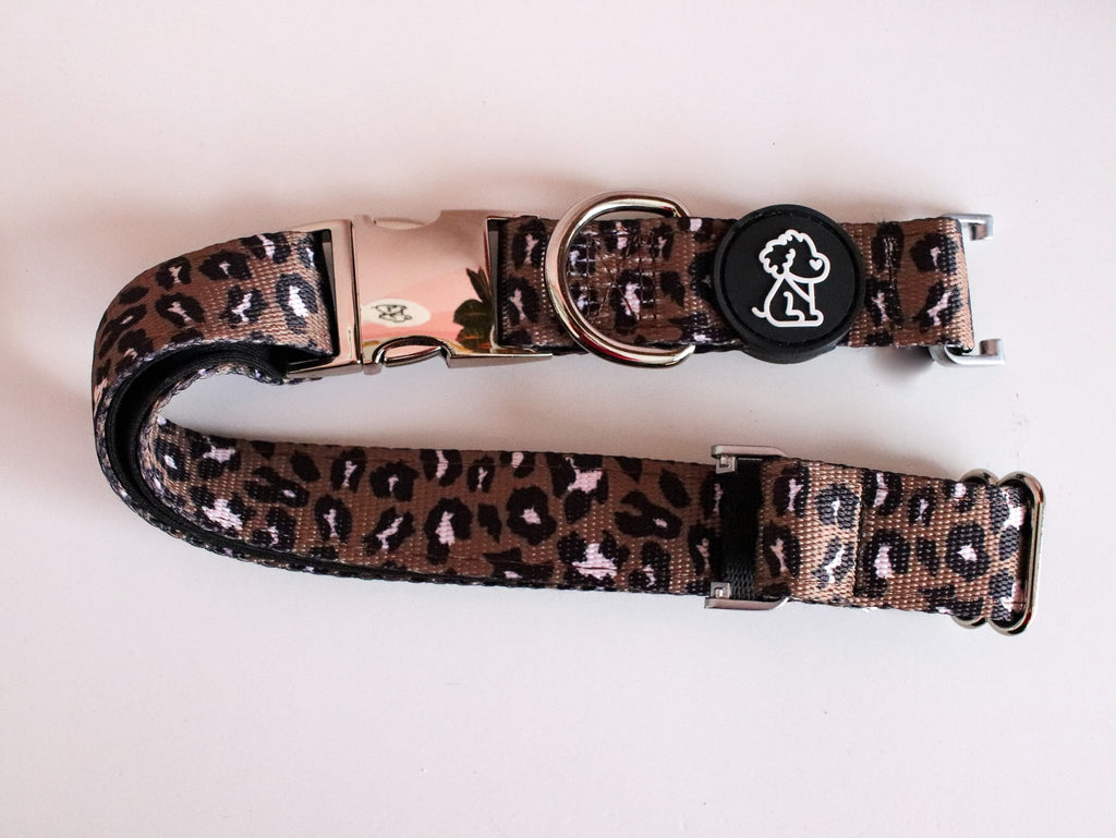 WILD Collection: Fi Compatible Leopard + Silver Comfort Dog Collar - Ripley & Rue
