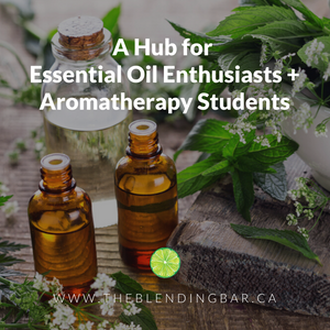 A Hub for Essential Oil Enthusiasts + Aromatherapy Students