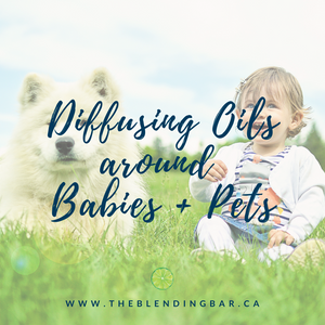 Diffusing Oils around Babies + Pets