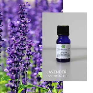 Lavender | Scent Collection