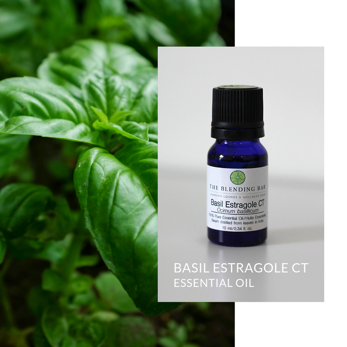 Basil CT Estragole Essential Oil