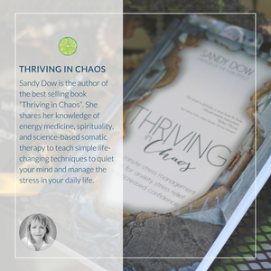 Thriving in Chaos by Sandy Dow