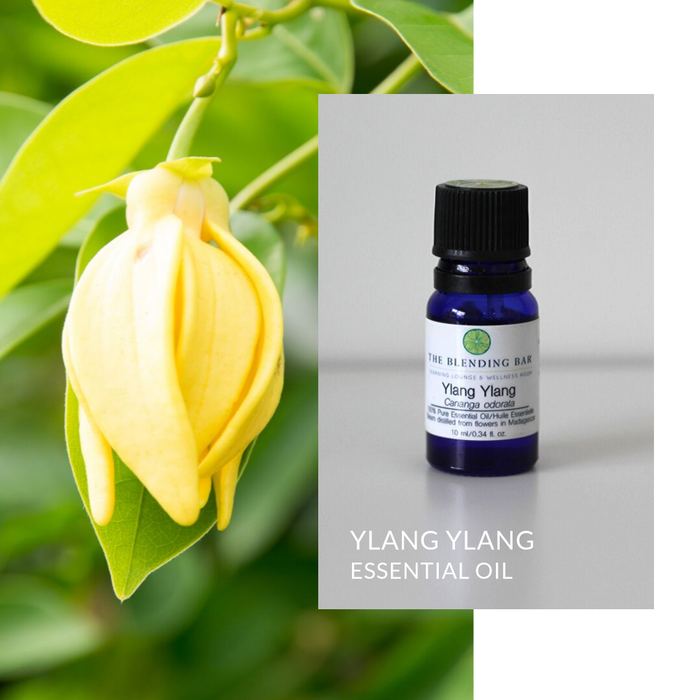Ylang Ylang Essential Oil