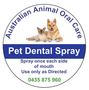 Dog Teeth Cleaning Melbourne