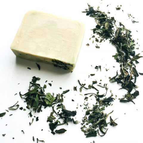 white tea soap white tea ginger sage soap lambs soapworks