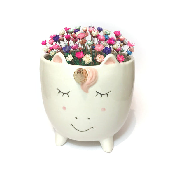 Unicorn Planter Blooms