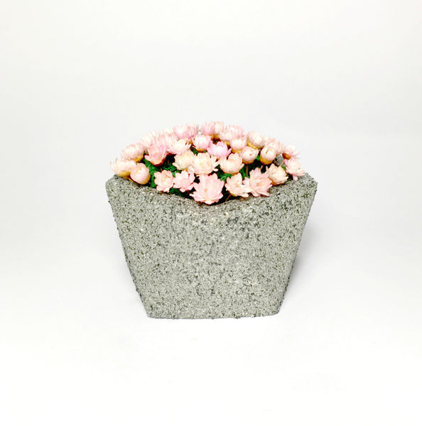 Concrete Planter Little Fairy Bloom set with real miniature flowers That Little Nook