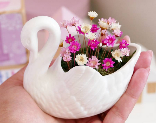 Little Fairy Bloom Swan Planter Decor Indoor Garden Plant Kids Bedroom Decor Miniature Flowers Real