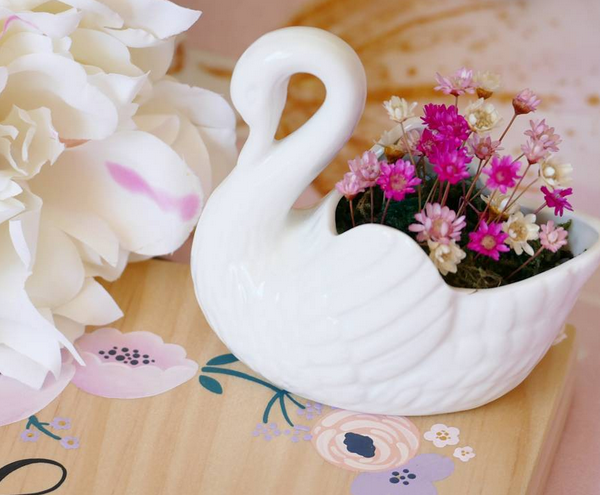 Little Fairy Bloom Swan Planter Decor Indoor Garden Plant Bedroom Decor