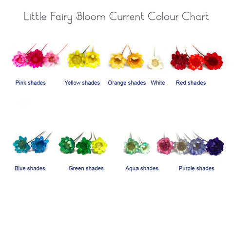 Little Fairy Bloom Colour Chart