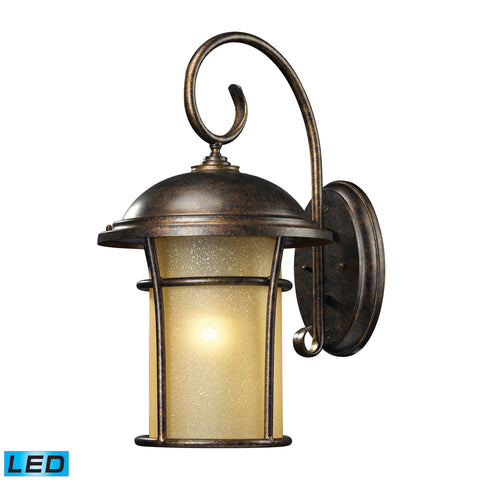 ELK Lighting  Bolla Vista 1 Light Outdoor Sconce in Regal Bronze - LED Offering Up To 800 Lumens (60 Watt Equivale