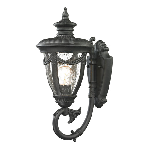 Anise 1 Light Outdoor Sconce In Textured Matte Black