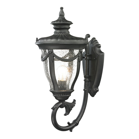 Elk Anise 1 Light Outdoor Sconce In Textured Matte Black Outdoor Wall item number 45076/1