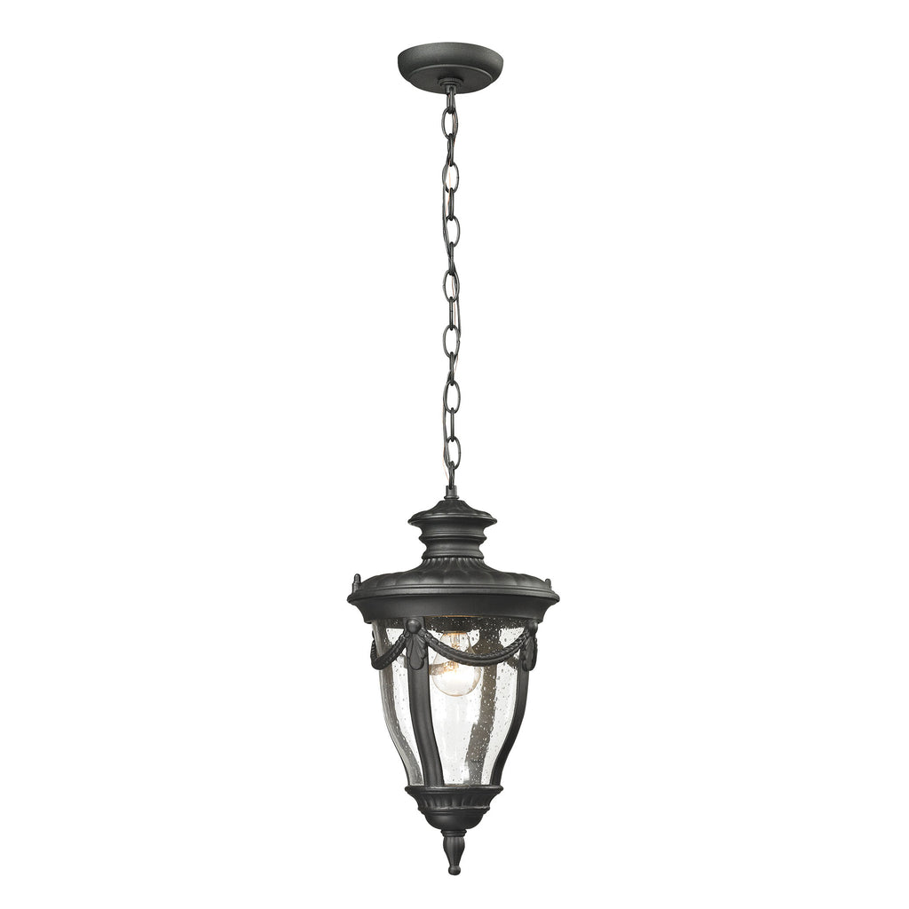 Anise 1 Light Outdoor Pendant In Textured Matte Black