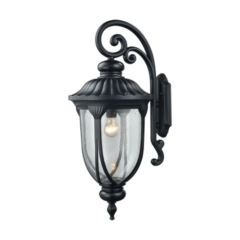 ELK Lighting  Derry Hill 1 Light Outdoor Wall Sconce in Matte Black
