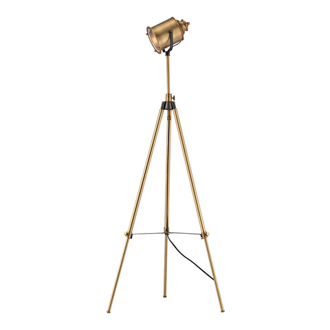 Beautiful Dimond Lighting  Ethan Floor Lamp in Aged Brass  in  Metal