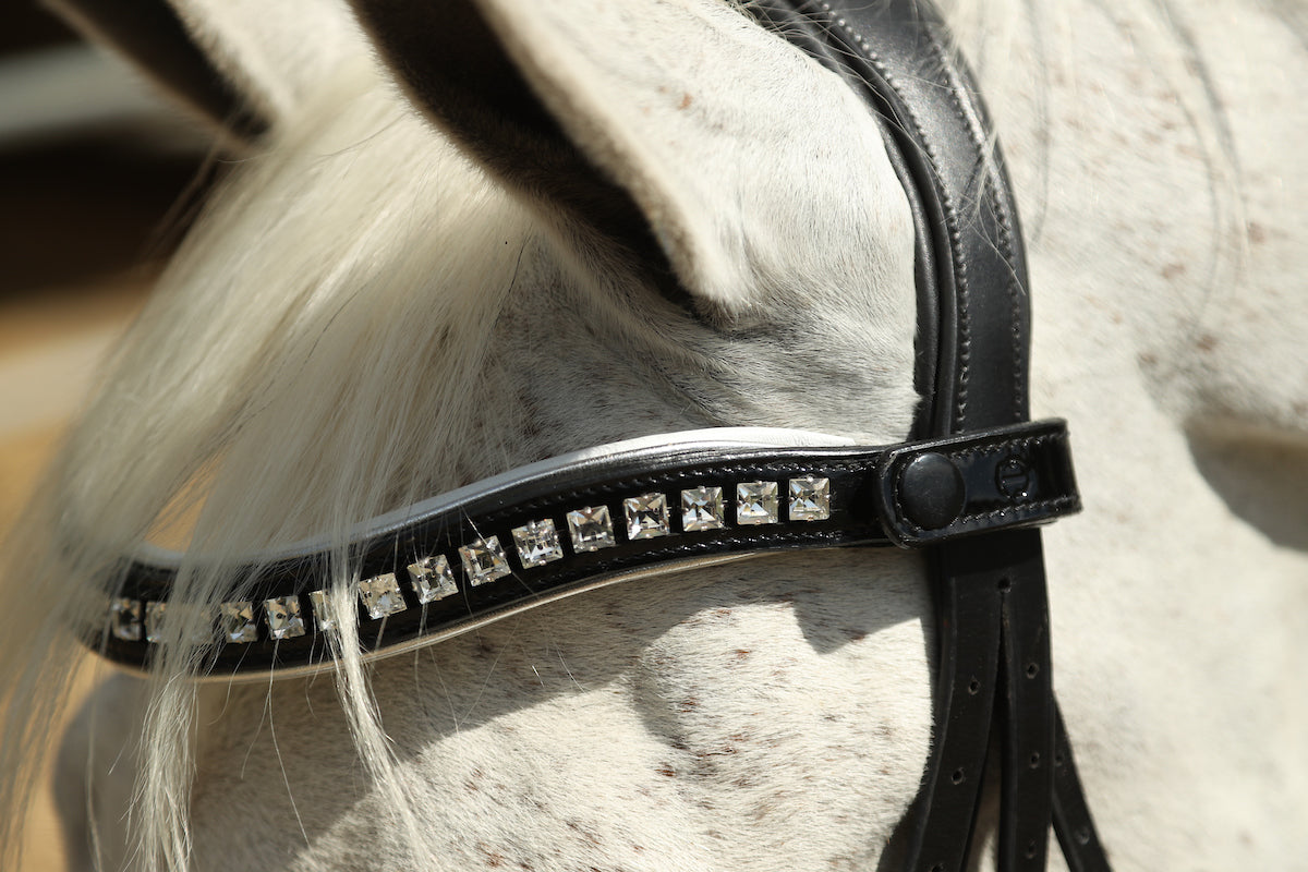 The Diana - Black Patent Rolled Leather Double Bridle