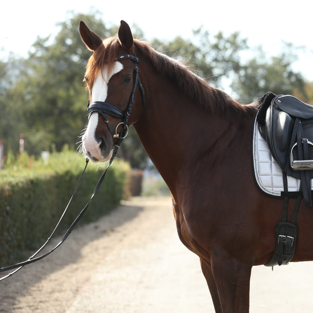 Halter Ego® 'Calisa' Patent Snaffle Bridle