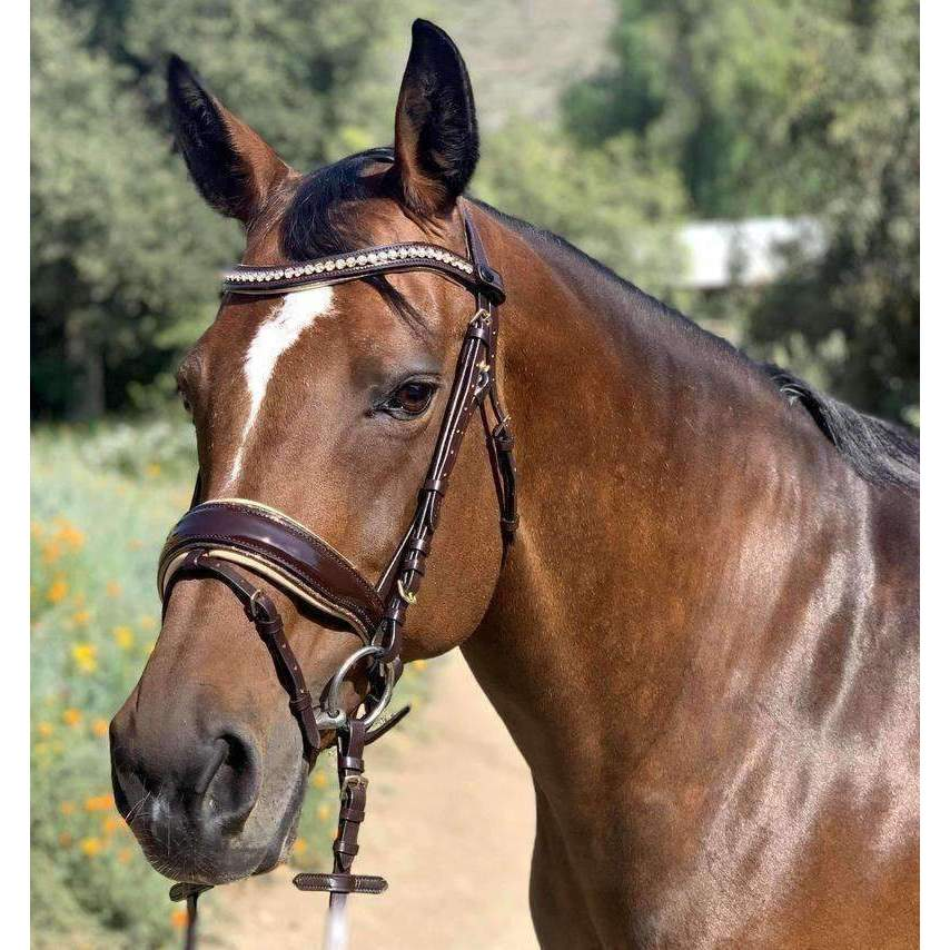 Halter Ego® 'Astrid' Brown Patent Sparkle Snaffle Bridle