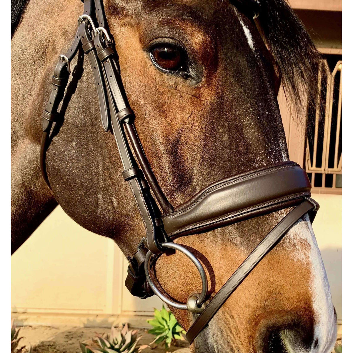 "Halter Ego® - ""McKenna"" Rolled Brown Anatomical Snaffle"