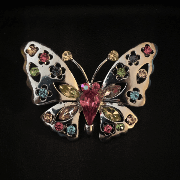 Multi-Colored Butterfly Pin