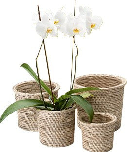 Round Rimmed Flower Baskets Set of 4