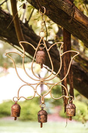 Lotus Copper Bells