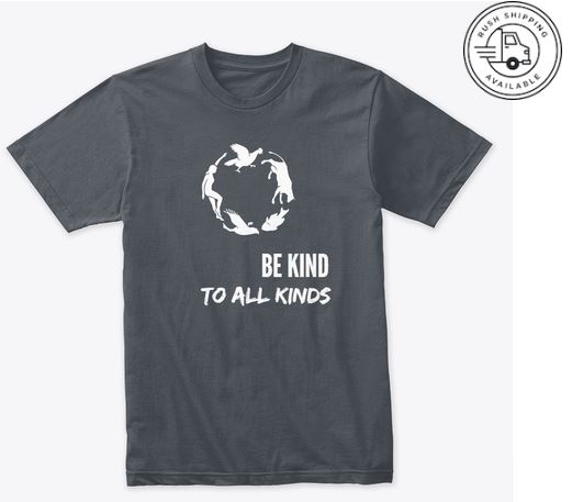 Be Kind T-Shirt (Unisex)