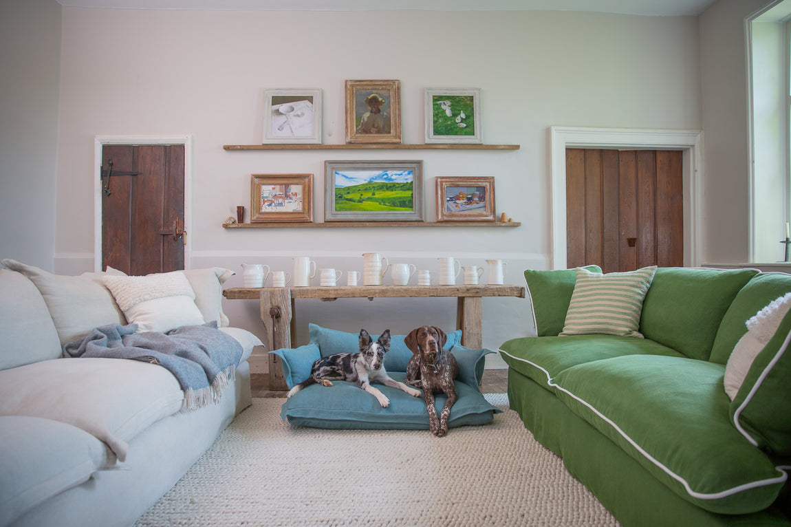 Maker&Son dog beds inside Kemps House with team pets