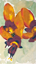 Load image into Gallery viewer, Diuris amplissima: Limited Edition Print
