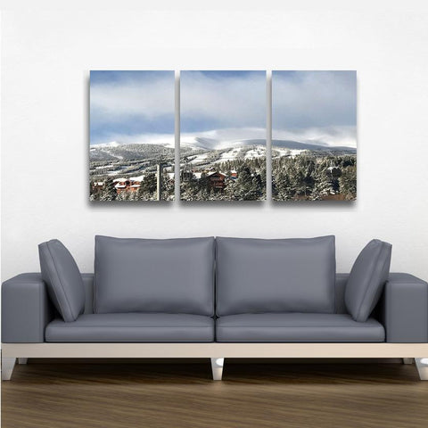3 Piece Custom Canvas - Powderaddicts