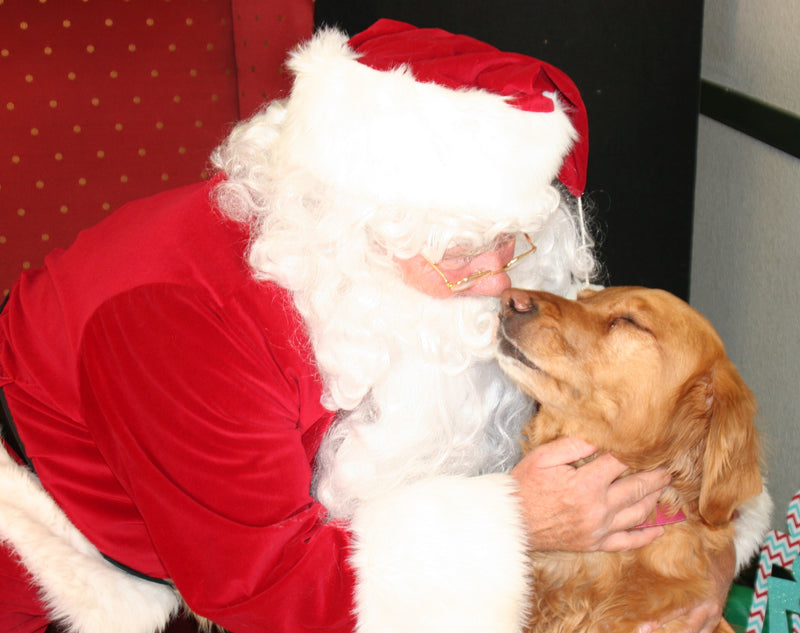 Santa Claus Loves Dogs!